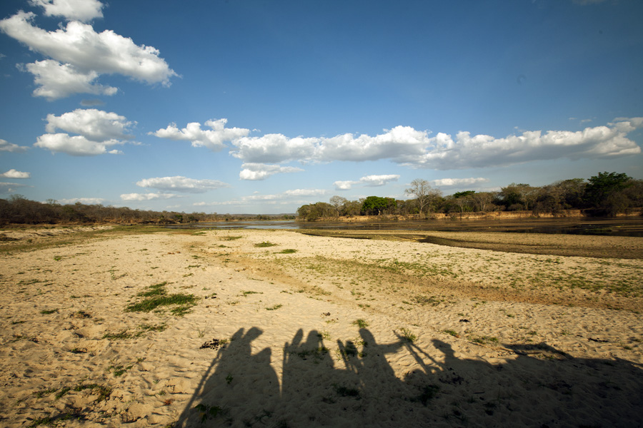Game Drive, Lukula Selous, Tanzania