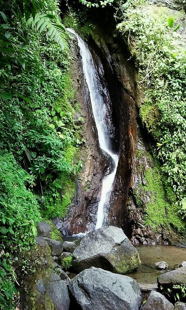 Arenal Hanging Bridges Waterfall
