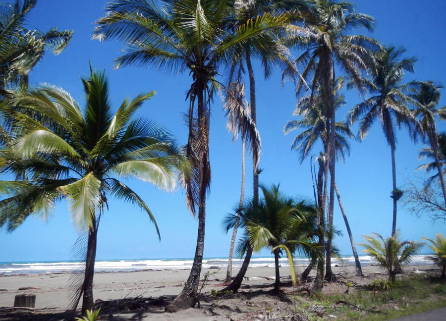 Caribbean, Limon, Costa Rica