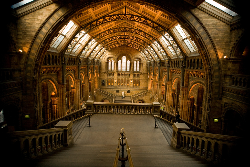 london-natural-history-museum-hall