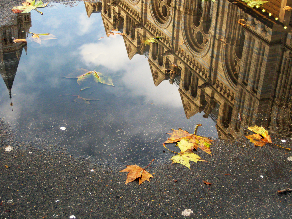london-water-reflection