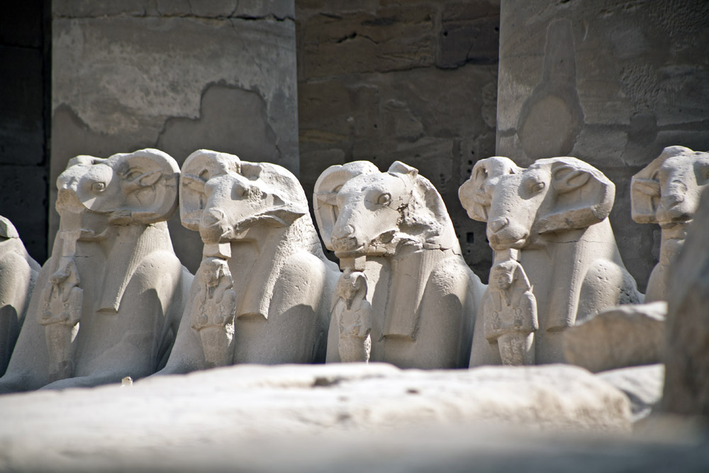 Ram Headed Sphinxes, Temple of Karnak, Egypt
