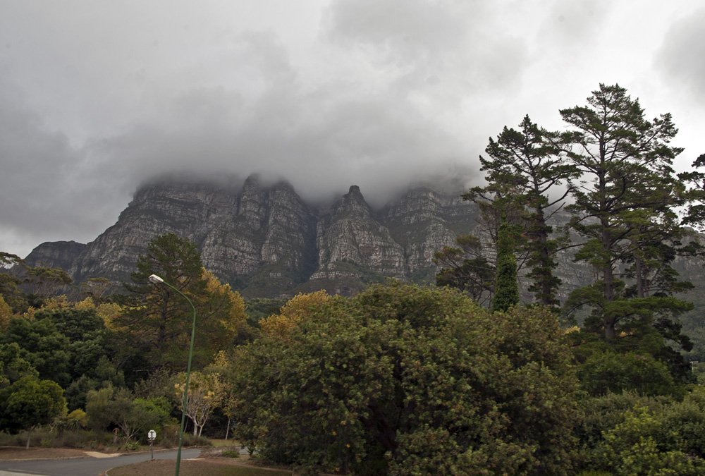 Kirstenbosch Gardens, City Sightseeing Cape Town, South Africa
