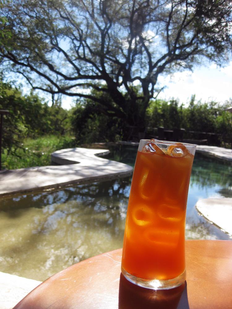 Toka Leya, Zambia - Iced Tea