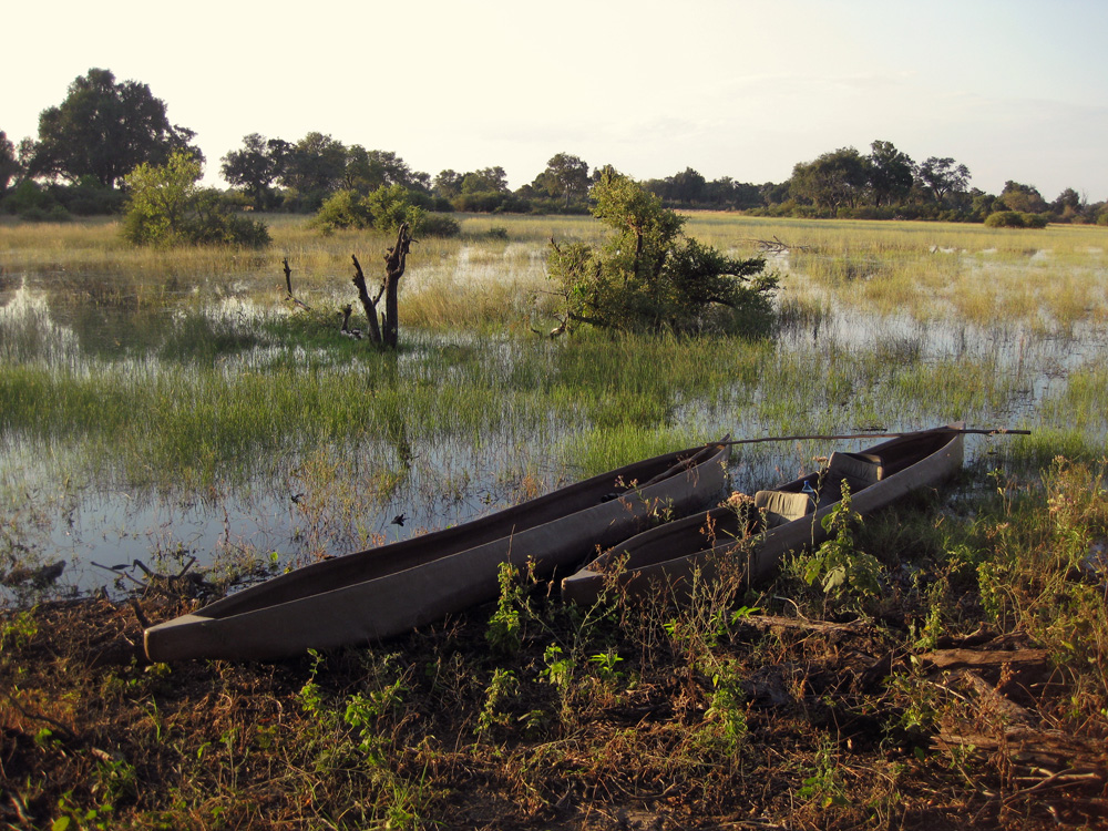 Vumbura Plains Mokoro Ride, Botswana Safari