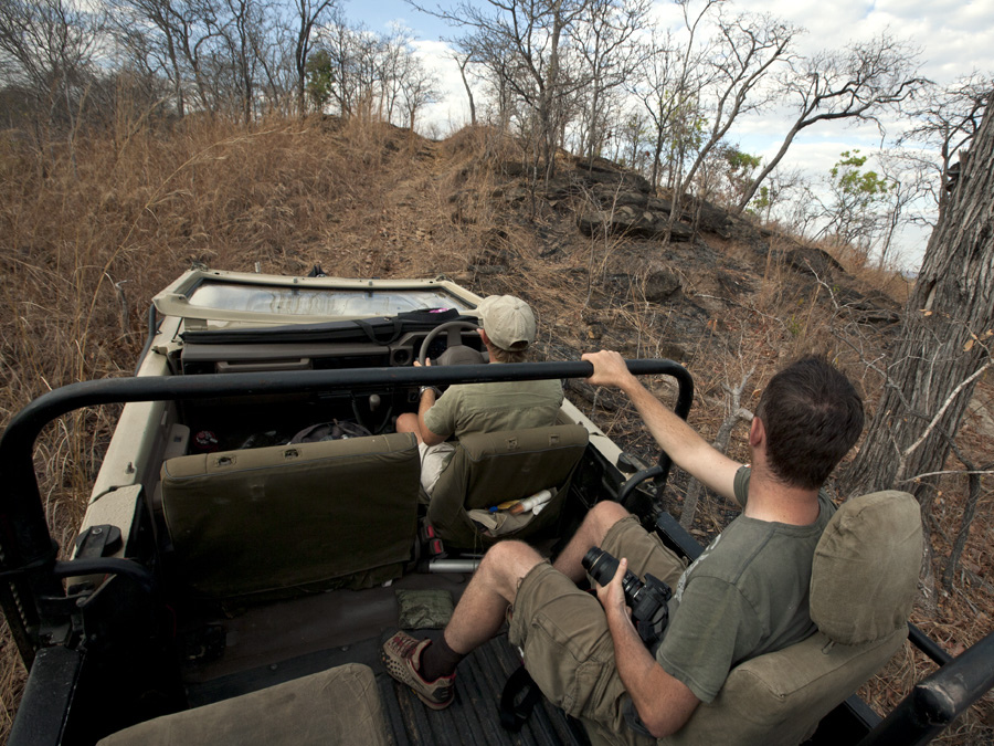 Lukula Selous Game Drive, Tanzania