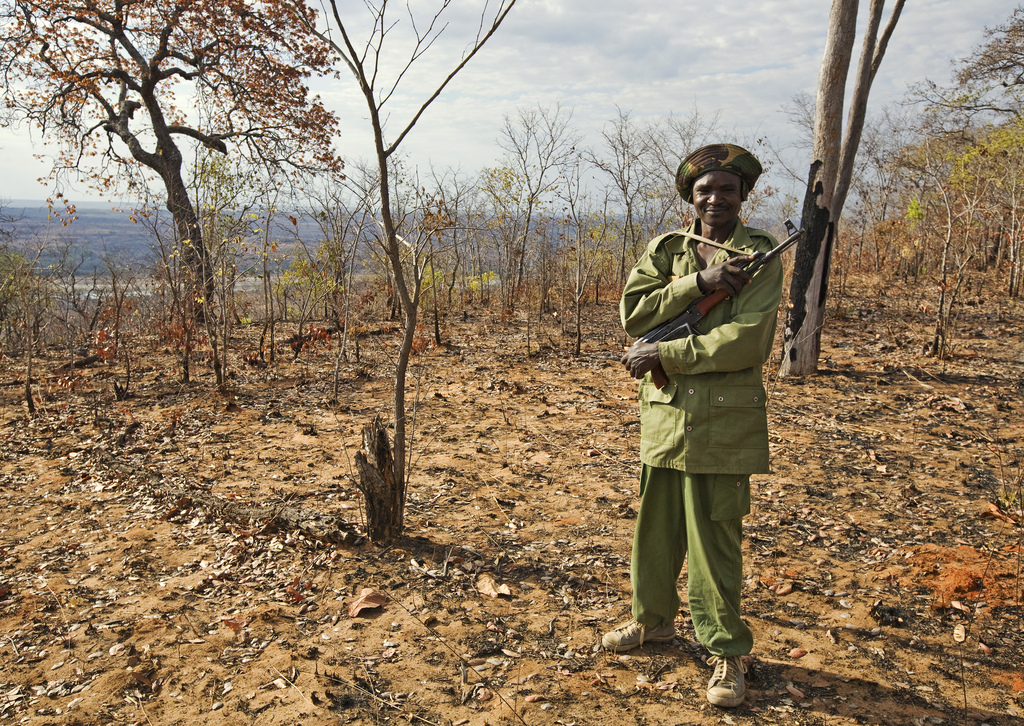 Ranger, Lukula Selous, Tanzania