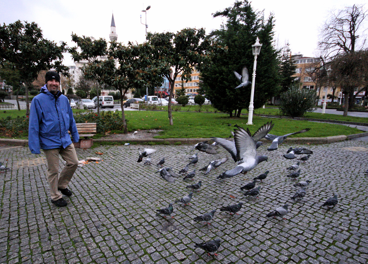 Sterling & Pigeons, Istanbul, Turkey