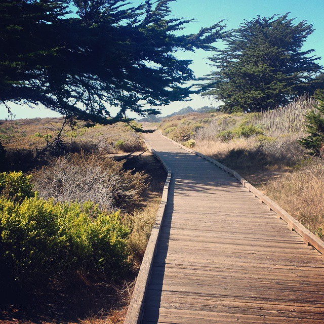 cambria-beach-path