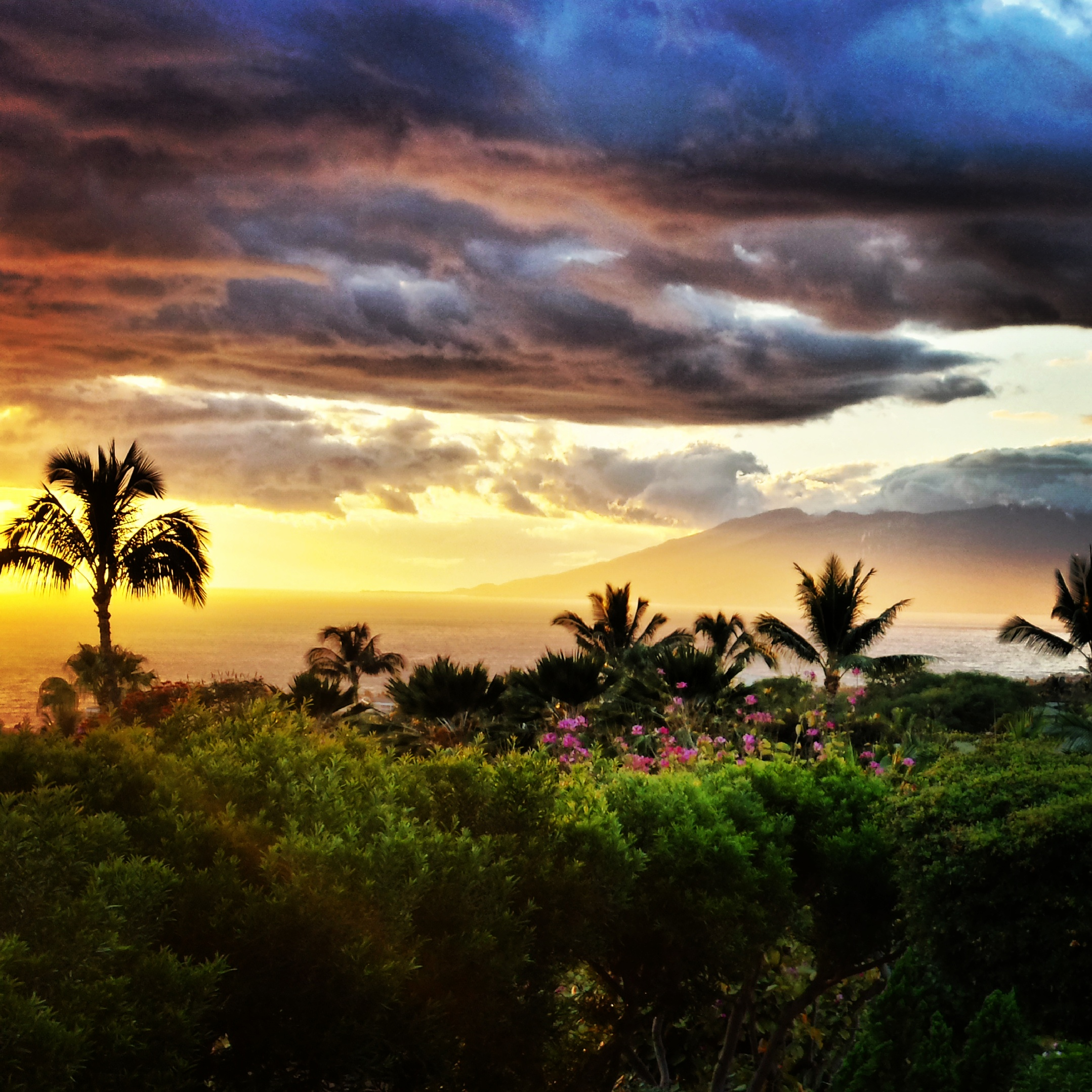 capische-maui-sunset