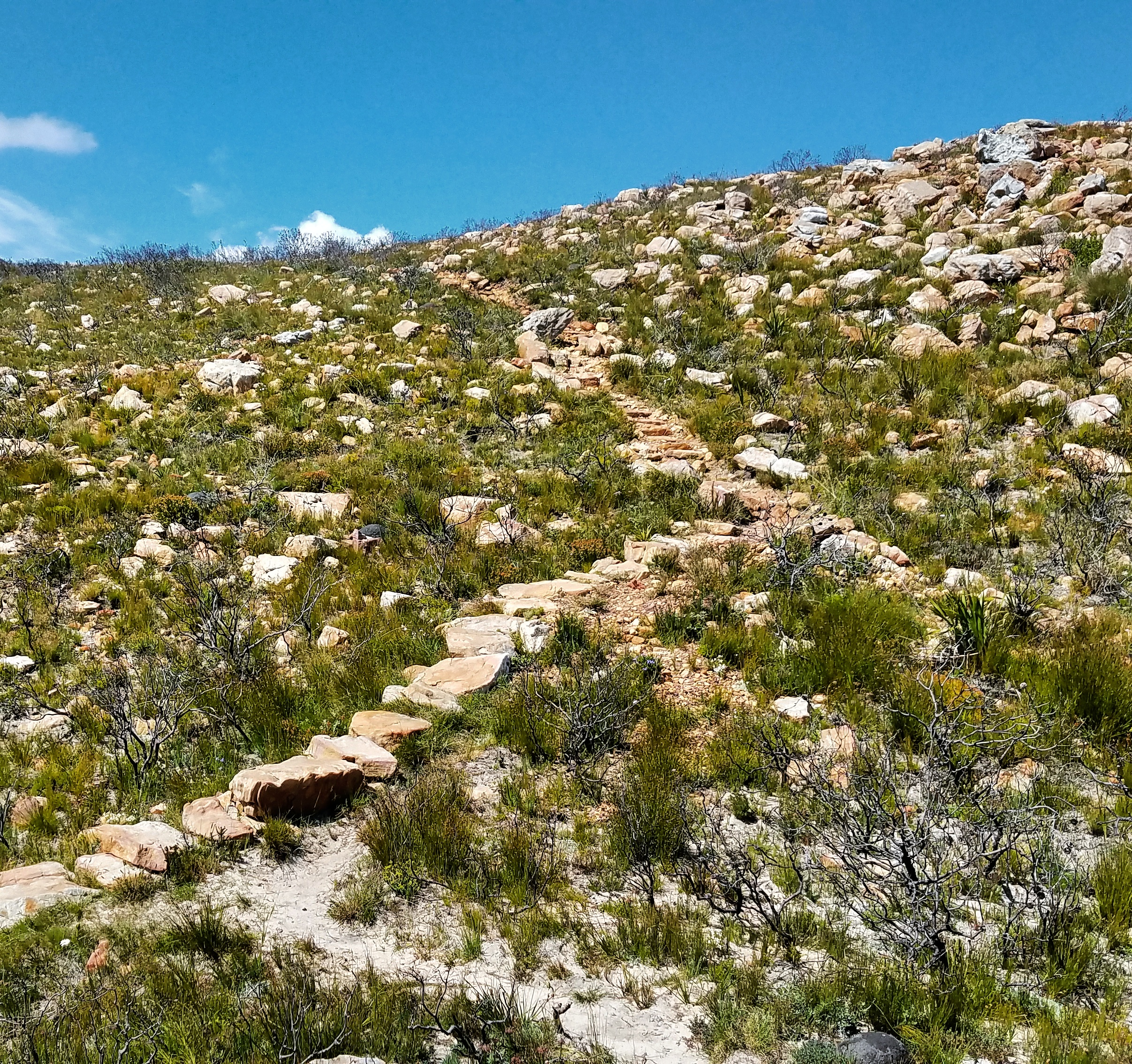 Hout-bay-chapmans-peak-hike-3