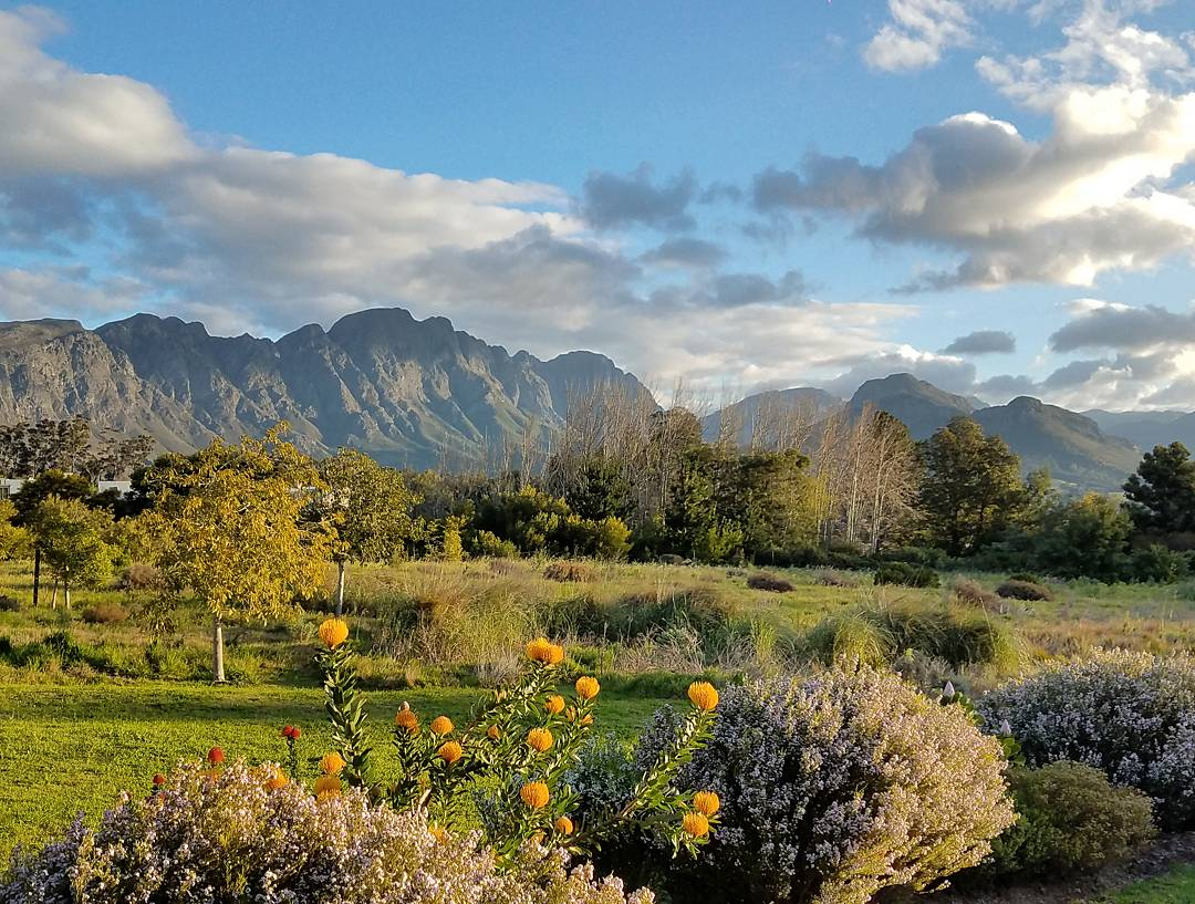 South-africa-airbnb-franschhoek-5