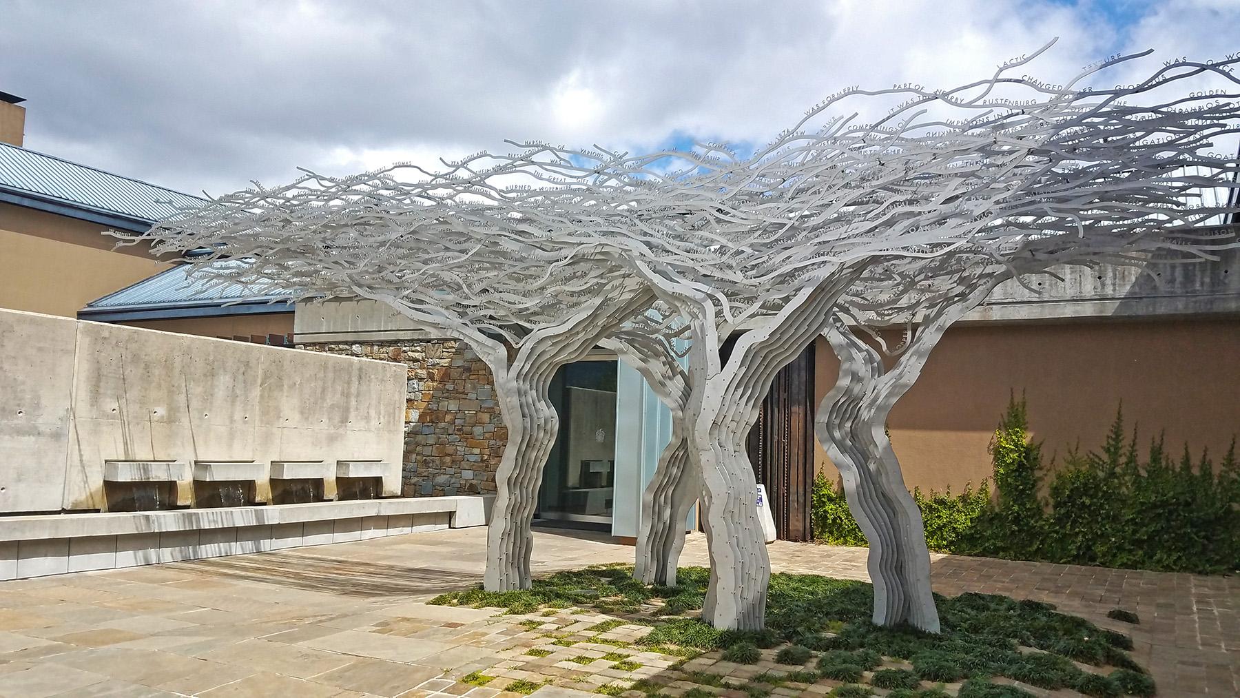 Tokara-wine-estate-stellenbosch-10