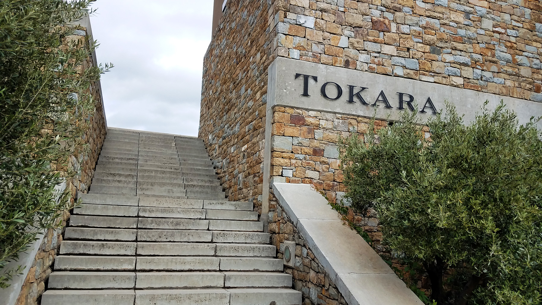 Tokara-wine-estate-stellenbosch-4