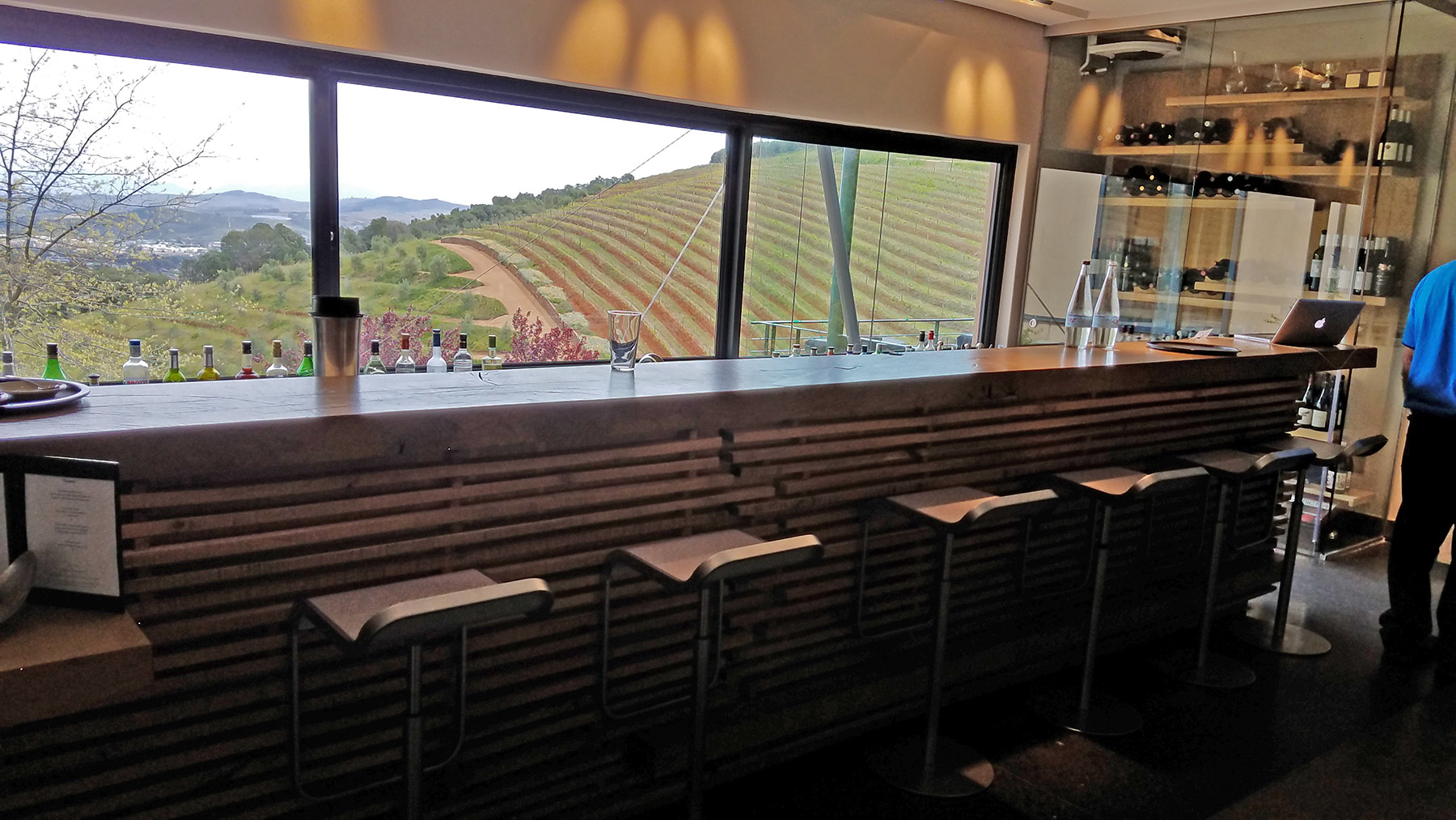 Tokara-wine-estate-stellenbosch-5