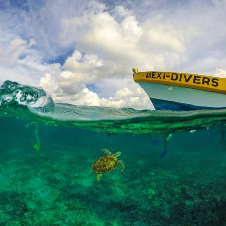 Snorkeling With Mexi Divers Tulum