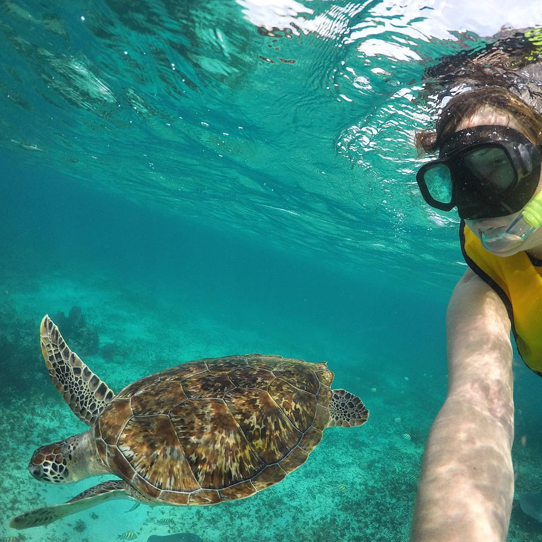 Mexi-divers-tulum-mexico-snorkeling-6