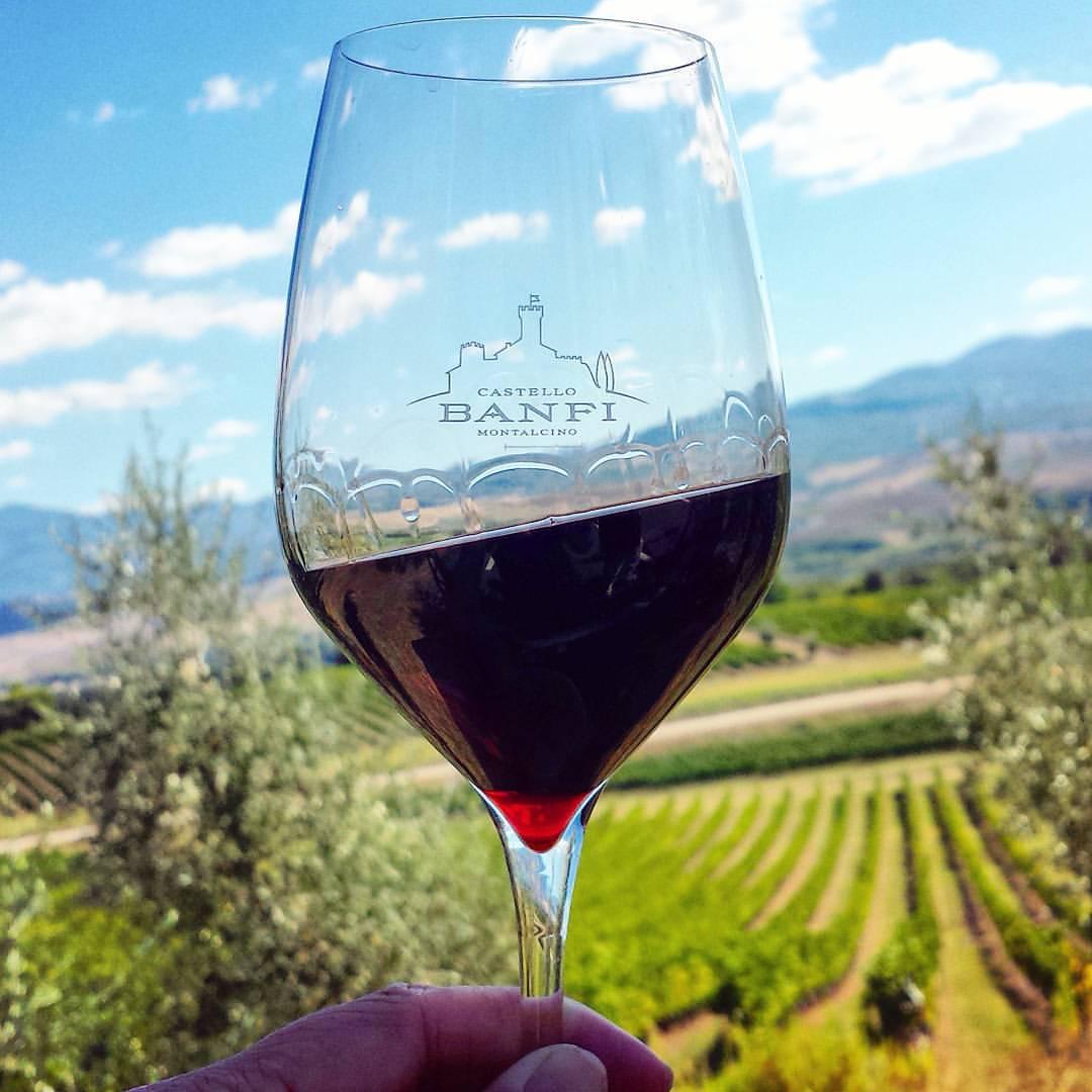 Banfi-winery-traveling-tuscany-italy