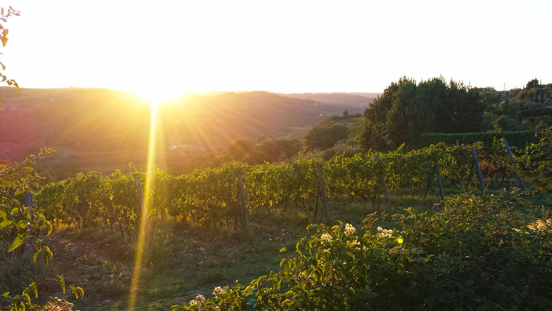 Castello-di-bibbione-sunset