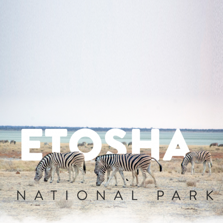 Self Driving To Etosha National Park
