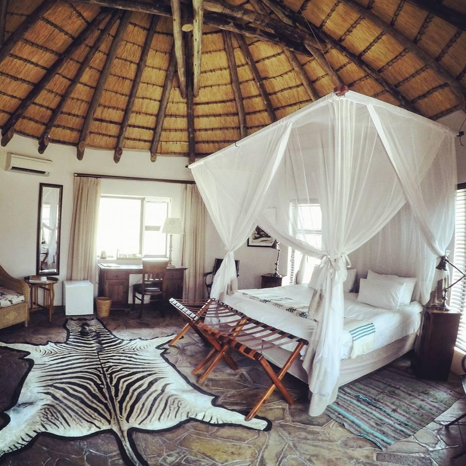 Etosha-national-park-namibia-3
