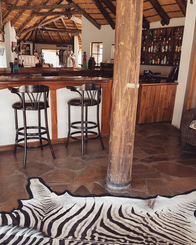 Etosha-national-park-namibia-7