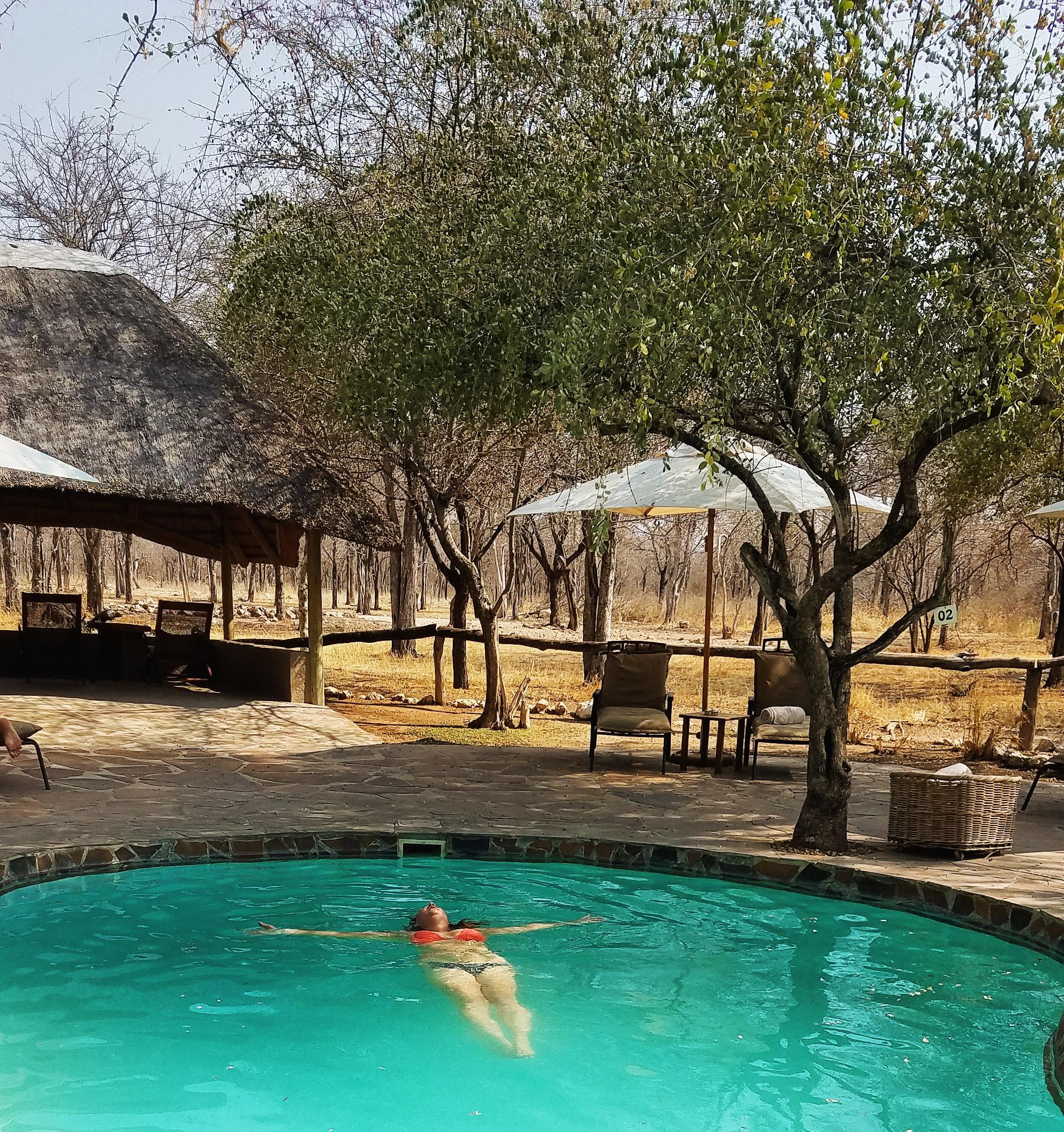 Etosha-national-park-namibia-8