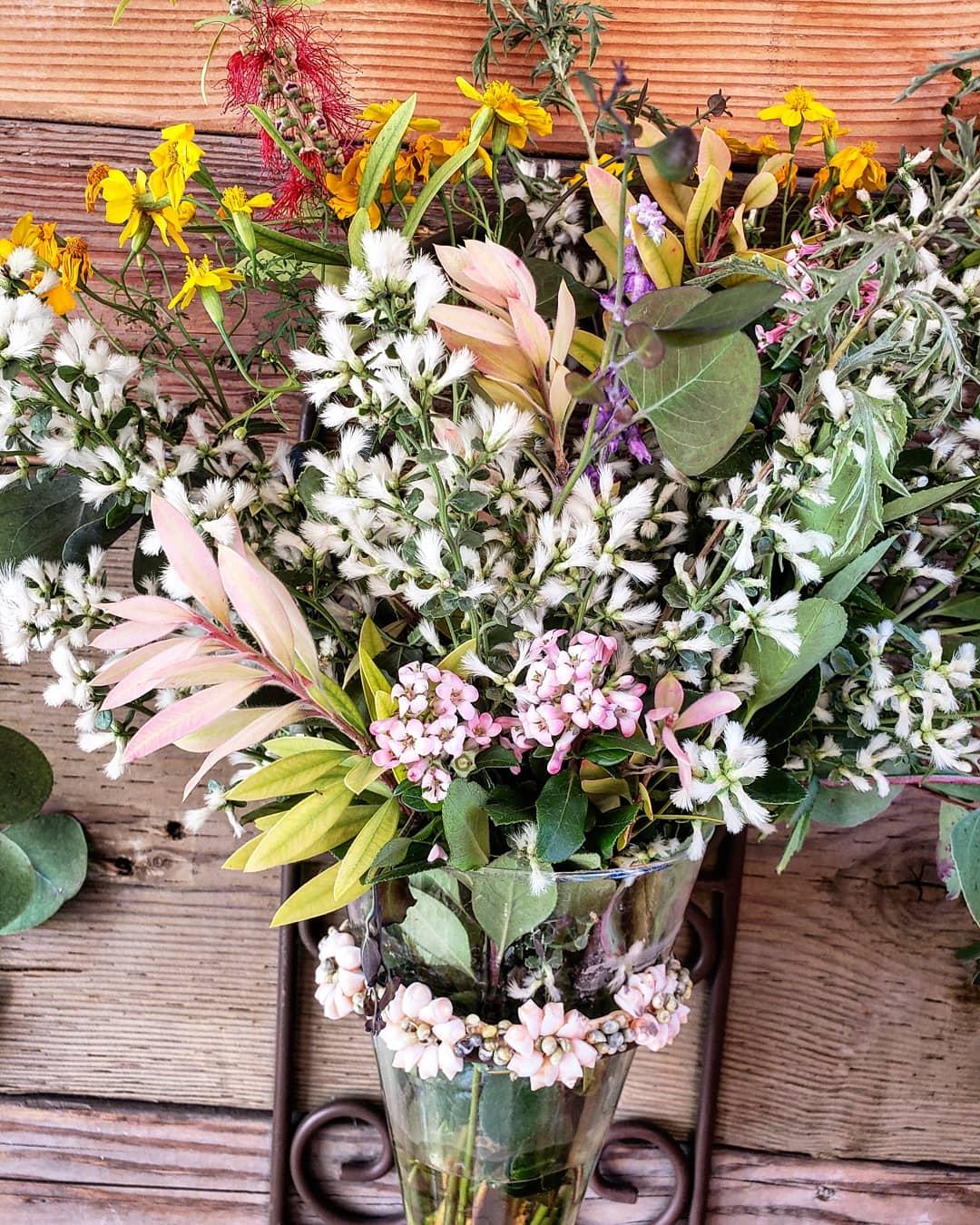 Los-alamos-hipcamp-flowers